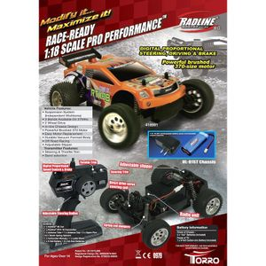 RC Truggy 1:18 Radline RTX-18 Torro Auto Car RTR