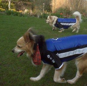 Hamburger SV Hundetrikot Hundpullover Grösse M