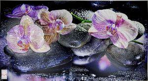 3D FLIESENBILD 3D Wandpaneele Wandverkleidung PVC-Verkleidung Orchidee Wandbild