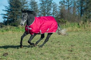 Bucas Freedom Weidedecke Winterdecke 300 g, Persian Red 135 cm