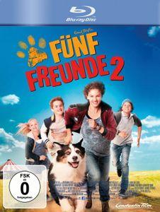 Fünf Freunde 2