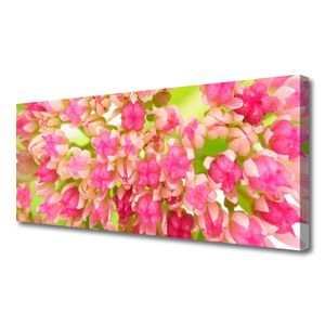 Tulup Leinwand-Bilder 125x50 Wandbild Canvas Kunstdruck Blüten Blumen Pflanzen
