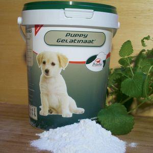 PrimeVal® Gelatinaat Puppy für Welpen, 350g Hundefutter gegen HD bei dem Hund