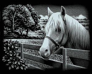 """Kratzbild """"Mein Pferd"""", Silber, 20 x 25 cm"""