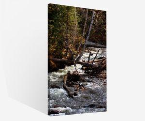 Leinwandbilder 1Tlg Herbst Wald Fluss Baum Bäume Natur Landschaft Leinwandbild Kunstdruck Wand Bilder Vlies Wandbild Leinwand Bild Druck 9W1727, Canvas BxH 1tlg:40x80cm