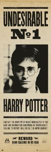 Harry Potter Langbahnposter Undesirable No. 1 - Langbahnposter