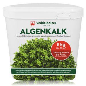 6 kg Algenkalk 100% reines Pulver / Puder aus Meeresalgen aus dem Atlantik stärkt Widerstandskraft & Regeneration des Buchsbaum beim Buchsbaumzünsler Buchsbaumdünger Naturdünger Spritzmittel