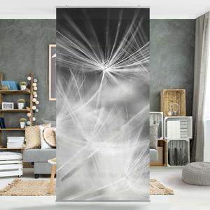 Raumteiler - Bewegte Pusteblumen Nahaufnahme auf schwarzem Hintergrund 250x120cm, Aufhängung:ohne Halterung