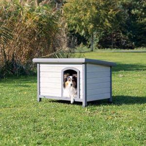 Natura - Doghouse - Klassiker mit Flachdach