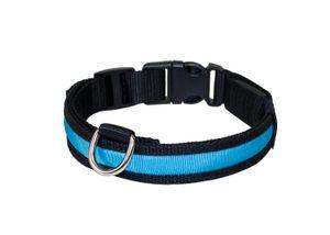 """Hundeleuchthalsband blau LED Halsband Hundehalsband """"Zandoo"""" f. Hunde M (ca. 40-50 cm)"""