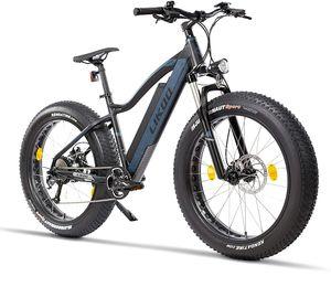 Fitifito FT26 Elektrofahrrad Fatbike E-Bike Pedelec, 48V 250W Heckmotor, 48V 13Ah 624W Samsung Akku, hydraulische Bremsen, Büchel Scheinwerfer