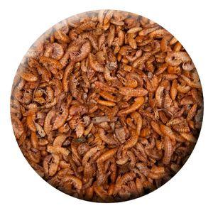 KENKOU® Gammarus / Bachflohkrebse - Koifutter | 0,5 kg | Reptilienfutter |