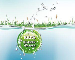 Heissner Fadenalgen-Frei TURBO Heissner Fadenalgen-Frei TURBO 250 ml für 5000 L
