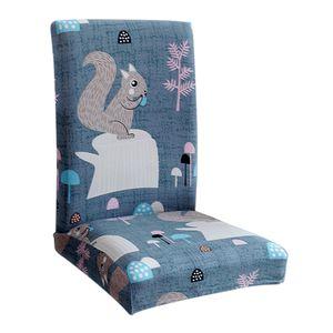 1 Stück Esszimmerstühle (Stuhl nicht enthalten) 8 Eichhörnchen wie beschrieben