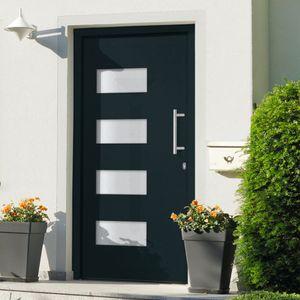 Eingangstür Aluminium und PVC Anthrazit 110x210 cm