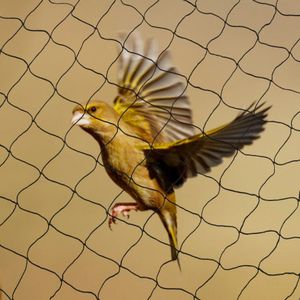 30x15M Vogelschutznetz schützt Teichnetz Laubschutznetz Gartennetz schützt Obstbäume zum Abdecken,für Garten,Balkon,Teich