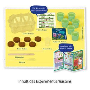Kosmos Mimosen-Garten Alarm auf deiner Fensterbank Experimentierkasten  Alter ab 6 Jahren