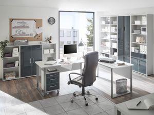 Büromöbel 110584 Office Luxo in Lichtgrau mit lackierten Graphit