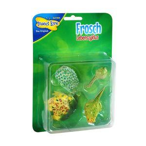 Insect Lore - Lebenszyklus Frosch aus Kunststoff