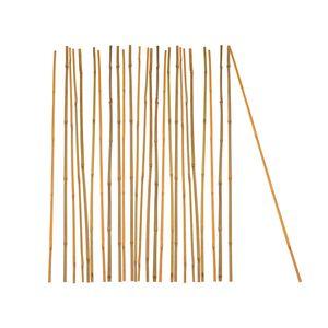 25x Pflanzstab Bambusstab 75 cm x 6 - 8 mm Bambus Rankhilfe Pflanzstab Tonkinstab 100% Naturprodukt
