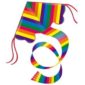 Einleinerdrachen Rainbow 97x58cm
