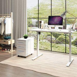 SANODESK EZ1 Elektrisch Höhenverstellbarer Schreibtisch mit Tischplatte 120*60cm 2-Fach-Teleskop, mit Kollisionschutz, Memory-Steuerung und Softstart/Stop Funktion (Weiß)