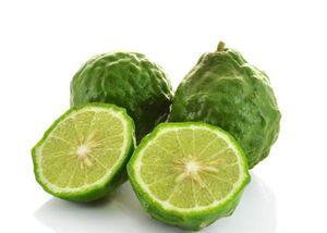 Kaffir-Limette 80 cm Stämmchen Citrus Hystrix Kaffir Lime Kaffernlimette Papeda Combava