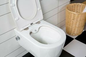 WC Spülrandlos Wand Hänge WC Taharet Dusch-WC Toilette Softclose inkl. ArmaturNanobeschichtung mit Bidet-funktion Intimdusche 54x36cm