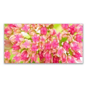 Tulup Leinwand-Bilder 120x60 Wandbild Canvas Kunstdruck Blüten Blumen Pflanzen