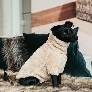 Kentucky Dogwear Sweater Teddy Fleece - Beige, Größe:S