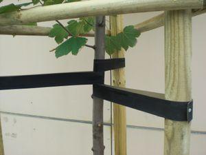 hebo Baumgurte / Baumbänder aus EPDM-Gummi