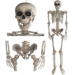 Deko Skelett 160 cm - Party & Halloween Dekoration Ganzkörper Horror Skeleton