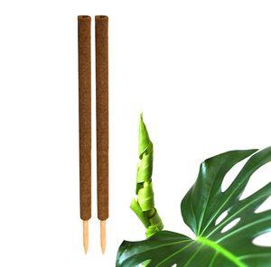 2x Kokos Pflanzstab 110 cm Rankstab Rankhilfe
