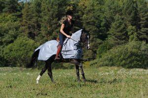 Bucas Buzz-Off Riding - silver, Größe:L