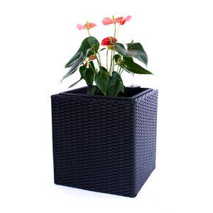 Pflanzkübel Polyrattan quadratisch 38x38x40cm schwarz.