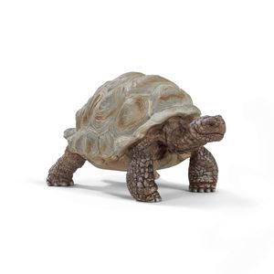 Schleich Wild Riesen Schildkröte