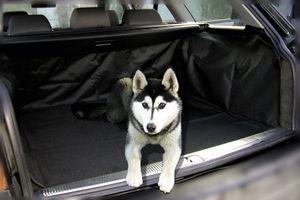 praktische Polyester Kofferraum Auto Schon Decke, Hundematte schwarz 102x70 cm, für Kofferraum+Rücksitzlehnen