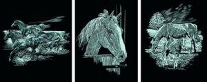 Scraper Kratzbilder 3er Set Silber - Pferde