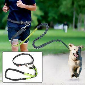 Melario Einstellbare Joggingleine Walkingleine Hundeleine Wanderleine mit Bauchgurt