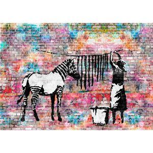 Washing Zebra Banksy 9388c RUNA Washing Zebra Banksy VLIES FOTOTAPETE XXL DEKORATION TAPETE− WANDDEKO 308 x 220 cm