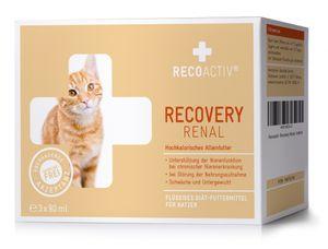 RECOACTIV® Recovery Renal für Katzen, 3 x 90 ml