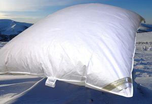 Hofmann Ballonbett Oberbett Federbett Schüttelbett 30% Daunen 135x200 warm 2000g