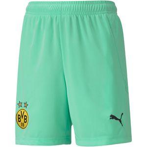 PUMA BVB Borussia Dortmund Torwarthose Replica Kinder green glimmer 152