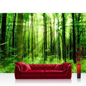 Vlies Fototapete no. 0061 - 400X280 cm - Sunlight Forest Wald Tapete Wald Bäume Sonnenstrahlen grün Ruhe grün liwwing (R)