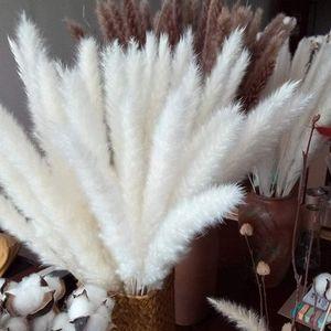 30 pcs Pampasgras, Natürliche Pampasgras Getrocknet Pampas Gras Phragmites Trockenblumen Blumenstrauß Deko für Hause