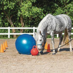Agility Set für Pferde