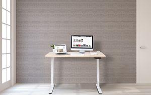 Better Home höhenverstellbares Tischgestell Schreibtisch Single Motor