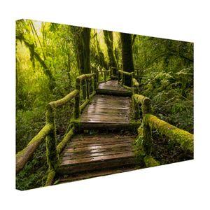 Leinwand Bilder - 60x40 cm - Schöner Regenwald und Dschungel  - Modernes Wandbilder - Natur