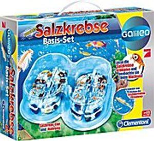 Galileo-Salzkrebse Basis Set