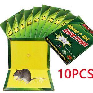 10x Ratte Kleber Mausefalle Bord Mäuse Maus Nagetier Schlagfalle Mäusekleber 24CM
